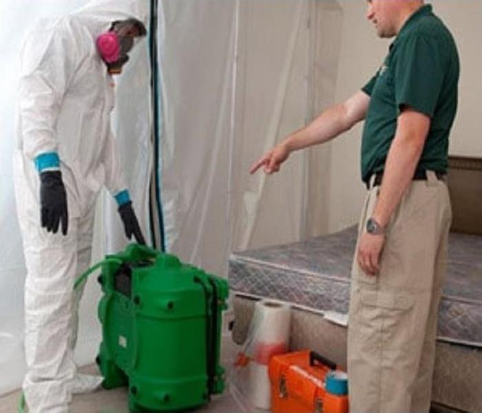 "Mold Remediation ""Mold Removal"" vs. Mold Remediation"